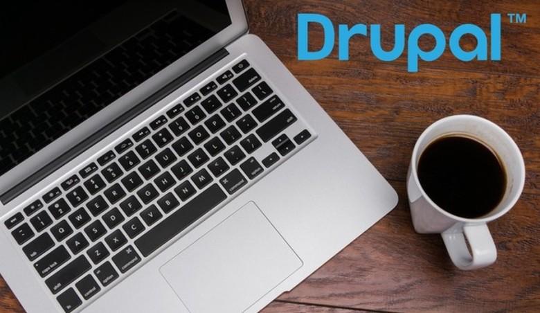 Dlaczego warto używać Drupala do tworzenia biznesowych stron www