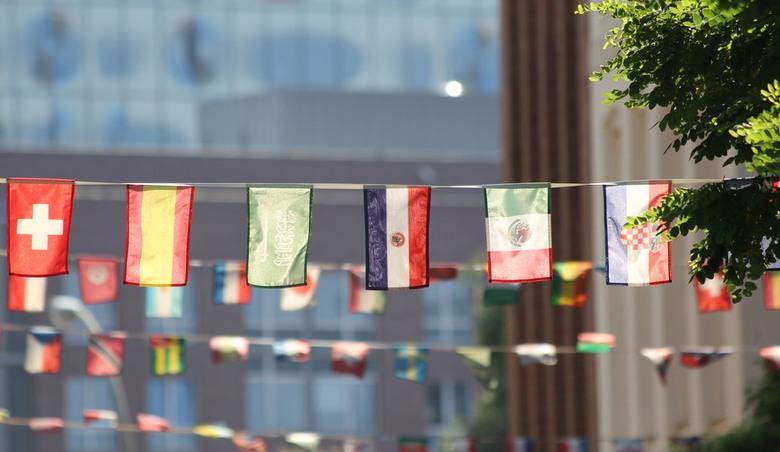 Witryny multiregionalne i wielojęzyczne